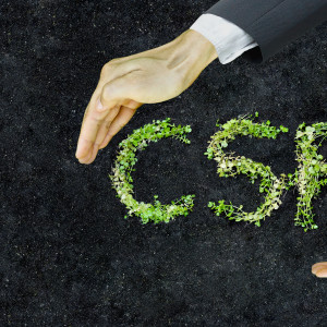 small green plants arranged in csr shape with supporting hands on soil background - corporate social responsibility